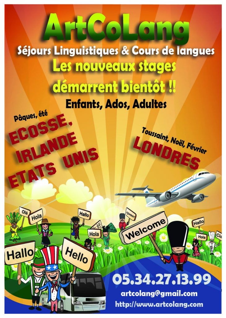 Flyer stages nouvel an 30 janvier
